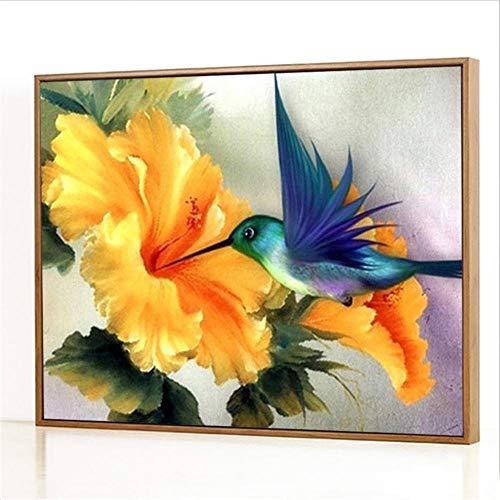 DIY Pintura por números Kits,Colibrí Pintada a Mano pintura al óleo digital, decoración del hogar Regalo - 40x50cm(Sin marco)