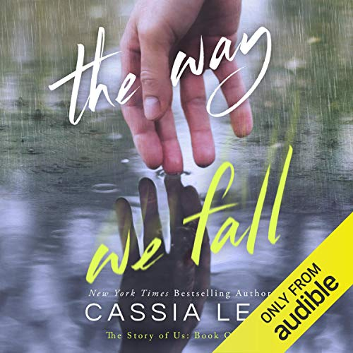 The Way We Fall  By  cover art