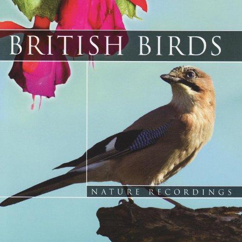 British Birds - Part 27 (Nature Sounds)
