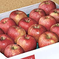 送料無料 青森県特別栽培農産物認証 津軽産りんご 葉とらずサンふじ 秀品 約5kg