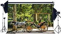 HDビニール10x7ft古い馬車の背景春のジャングルの森の背景ヨーロッパの王立公園の木カウンティナード自然写真の背景女の子のためのプリンセス屋外の旅写真スタジオの小道具563