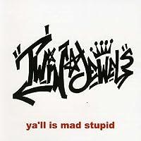 Ya'll Is Mad Stupid