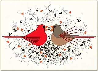 趣味圣诞贺卡查理哈巴贺卡盒装节日卡片带信封 - 12 张圣诞鸟卡片,问候:季节问候