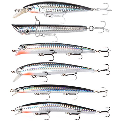 Dr.Fish Assorted 6 Jerkbait Minnow Plugs Popper 5in Hardbaits Kit