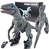 HGFDSA Remote Control Dinosaur Robot, Dinosaur Toys for Kids 3-5, Walking T-rex Jurassic Dinosaurs Toy with Sound/Led Spray, Velociraptor Blue Robot Gifts, Electronic Pets