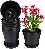 Homenote Pots for Plants