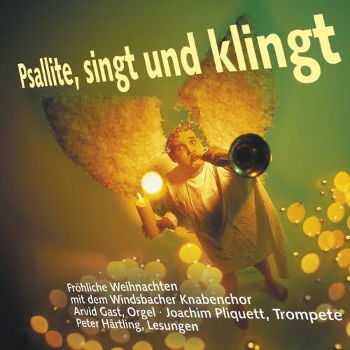 Karl-Friedrich Beringer