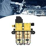 CHICIRIS Bomba de Agua, Bomba Multiusos de 12 V de óxido, Ventilador Doble para riego de Tierras de Cultivo ecológico