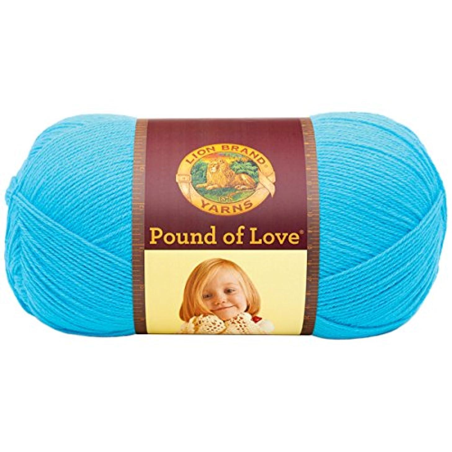Lion Brand Yarn 550-148 Pound of Love Yarn, Turquoise, 16oz