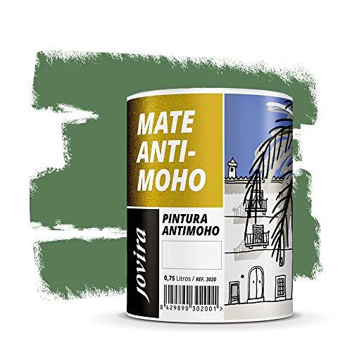 PINTURA ANTIMOHO, evita el moho, resistente a la aparición de moho en paredes, aspecto mate. (750 ML, VERDE NORTE)