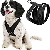 Gooby Comfort X Head In Harness - Black, Medium - No Pull Small Dog Harness Patented Choke-Free X Frame - Perfect on the Go Dog Harness for Medium Dogs No Pull or Small Dogs for Indoor and Outdoor Use