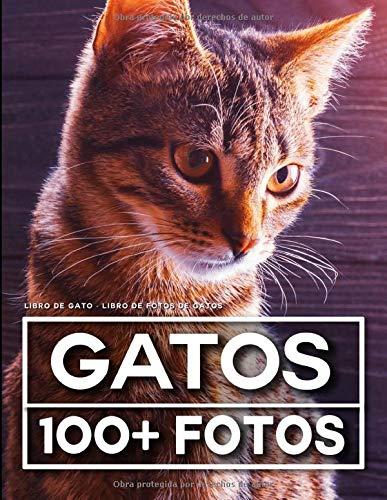 Libro De Gato - Libro De Fotos De Gatos: 100 Hermosas Fotos En Este Fantástico Álbum De Fotos (Gato Libro - Libro De Photos De Gatos)