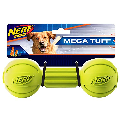 Nerf Dog Rubber Chew  Barbell Dog Toy, Lightweight, Durable and Water Resistant, 7.5 Inches, For Medium/Large Breeds, Single Unit, Green Air Kong Squeaker Dumbell
