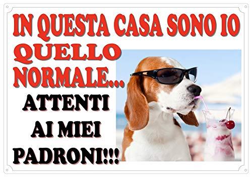 Cartello Targa ATTENTI AL CANE  da Cancello UMORISTICA (ATTENTI AI PADRONI) cm 30 x 21,5