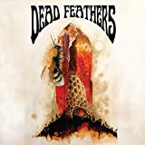 Songtexte von Dead Feathers - All Is Lost