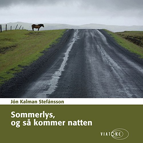 Sommerlys, og så kommer natten [Summer Night and Then Comes the Light] audiobook cover art