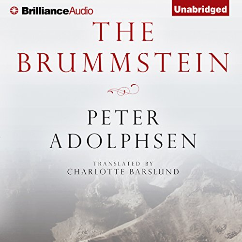 The Brummstein audiobook cover art