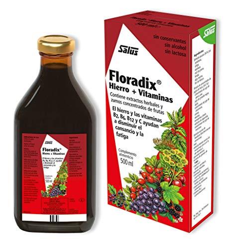 Floradix Hierro 500 ml SALUS Jarabe - Hierro de fácil asimilación y tolerancia