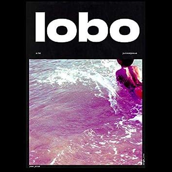Lobo (feat. La Femme D'argent)