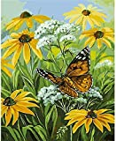 ZXlDXF Kit de pintura por números para adultos y niños, pintura al óleo digital, decoración de regalo, hermosas flores y mariposas, 40,6 x 50,8 cm