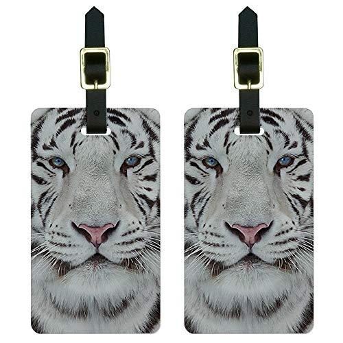 Set di 2 etichette per bagagli con tigre bianca del Bengala con occhi azzurri