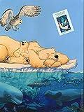 Waluk, Tome 1 & 2 - Coffret en 2 volumes : La grande traversée ; La route du Grand Chien : Avec un poster inédit