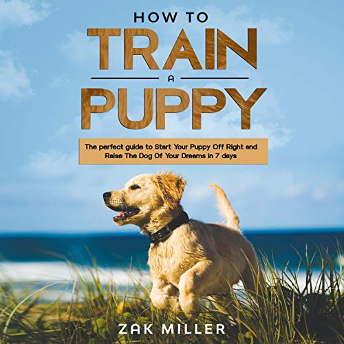 How to Train a Puppy cover art