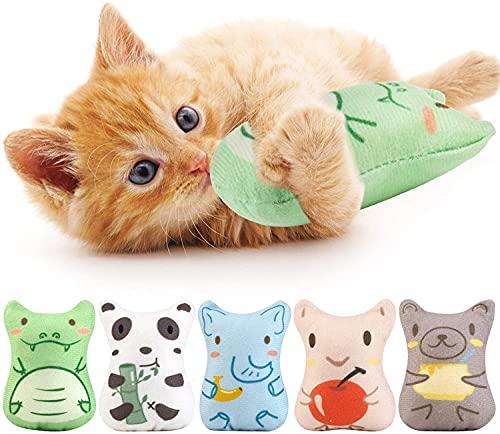 Dorakitten 5 Stück Katzenspielzeug Set : Katzenminze Spielzeug zum Kratzen Spielen und Kauen | Katzen Kissen für Katzen mit getrockneter Katzenminze