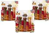 9-Count Nylabone Frenzy Pancakes, Roast Beef Club, and Meat Lasagna Flavor Chew Bones - (3 Packages with 3 Bones Each)