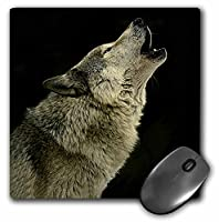 3drose LLC 8x 8x 0.25インチマウスパッド、Timber Wolf ( MP _ 724_ 1)