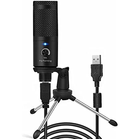 USB Microphone, Piy Painting Recording Microphone, 192kHz/24bit Condenser Mic Compatible with PC Laptop, Plug&Play Computer Microphone for Podcasting, Gaming, Streaming-D08