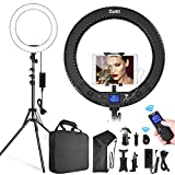 Switti LED Ring Light with Stand and Phone/iPad Holder, 19 Inch 60W Bicolor 3000K-5800K Large Circle Light with Remote Controller for Photography/YouTube Video/Self-Portrait Shooting/Live-Stream