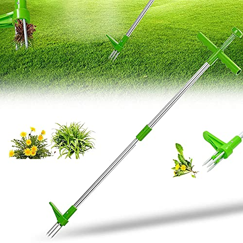 MAQIANFAA Standing Plant Root Remover Weed Puller Hand Tool 36inch Long Handle Garden Stand-Up Weeder Dandelion Manual Grandpas Gardening Tools with 3 Stainless Steel Claws and Foot Pedal Green-1PCS