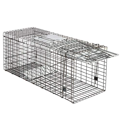 Smartxchoices 32-inch Live Animal Cage Trap Catch and Release Spring Loaded One-Door Collapsible Humane Rodent Cage for Rabbits,Stray Cat,Squirrel,Raccoon,Mole,Gopher,Opossum,Skunk,Groundhog