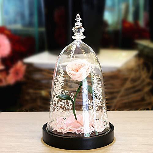 TP&DD La Bella y la Bestia Rose Luz de Fiori eterni,Cubierta de Cristal Caja de Regalo,Valentín Regalos creativos Pétalos caídos-L 22x22x34cm(9x9x13inch)