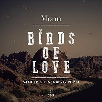 Birds Of Love (Sander Kleinenberg Remix)