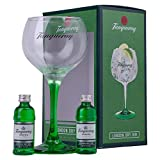 Tanqueray London Dry Gin 2 x 5cl And Copa Glass Gift Set
