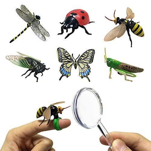 JOLLY SWEETS Pretend Insect Bug Figures Toys Set, Finger Ring Bug, Magnifying Glass, Dragonfly, Butterfly, Grasshopper, Bee, Ladybird, Cicada, Realistic Pretend Play Toys 6 Pcs..