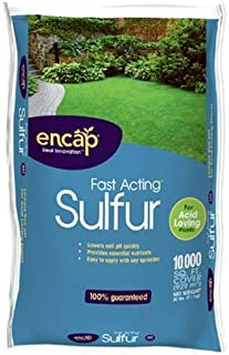 Encap 1089896 Fast Acting Sulfur Plus AST, 20-Pound