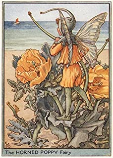 Horned Poppy Fairy by Cicely Mary Barker. Wayside Flower Fairies - c1948 - old print - antique print - vintage print - Flower Fairies art prints