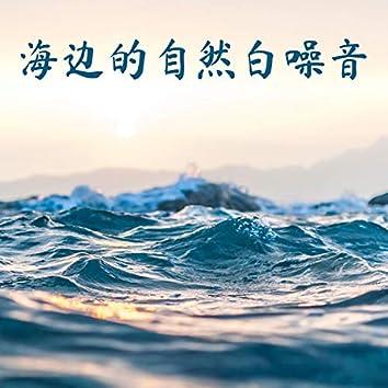 海边的自然白噪音 - 海鸥的声音, 日落海滩的浪声
