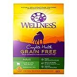 Wellness Complete Health Natural Grain Free Dry Dog Food, Lamb,...