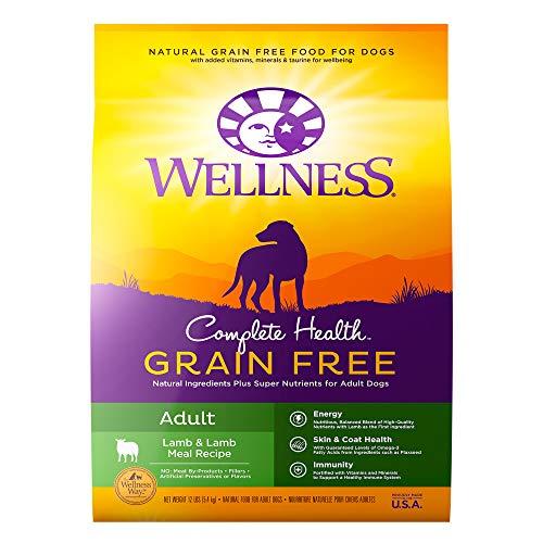 Wellness Complete Health Grain Free Dry Dog Food, Lamb & Lamb Meal Recipe, 12 Pound Bag
