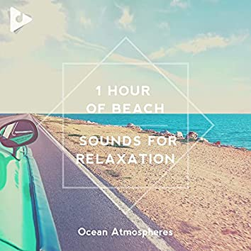 1 Hour of Beach Sounds for Relaxation