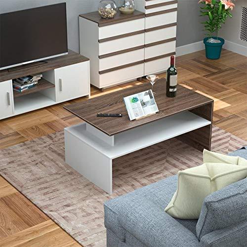Qyz Household Floor Tea Table Coffee Table Home Furniture Living Room Coffee Table Side Furniture Desk Coffee Desk, 2 Tier Personalized living room