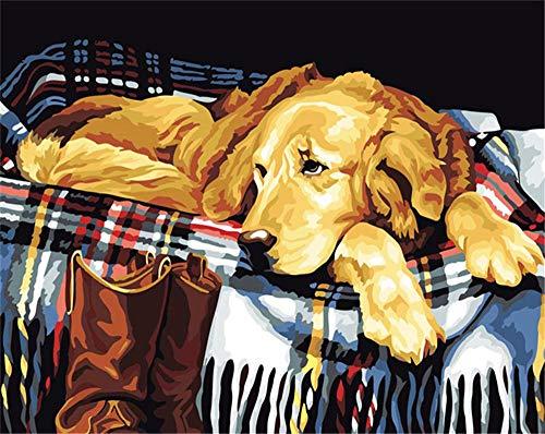 XKLHXFY Pintar por Numeros Adultos NiñosBufanda animal perroDibujos para Pintar con Pinturas y Pinceles 40 x 50 cm Principiantes Fácil sobre Lienzo con Números Sin Marco