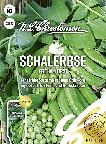 Schalerbse Feltham First, sehr frühe Sorte mit großem Grünkorn, Samen