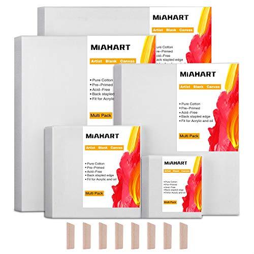 MIAHART 5 set Artista Lienzo en blanco para pintura al óleo acrílica en 5 cuadros de lienzo estirado de varios tamaños (30x35cm  25x30cm  20x25cm   15x15cm  10x10cm)