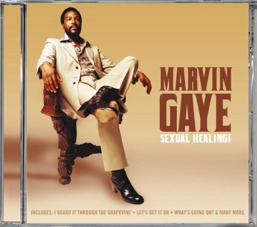 Sexual Healing by Marvin Gaye (2007-01-01)