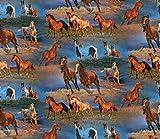 Fat Quarter Freiheit Running Horses (Pferde), Baumwolle, 50